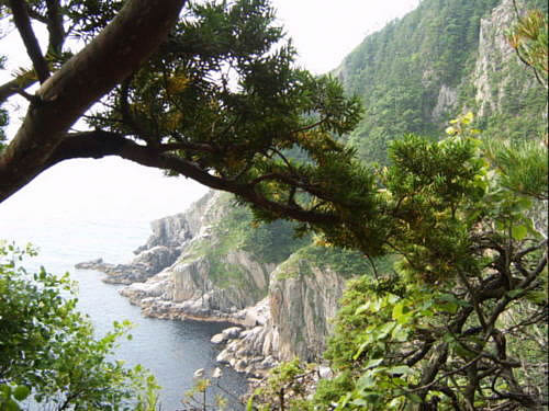 Как охраняют природу приморского края