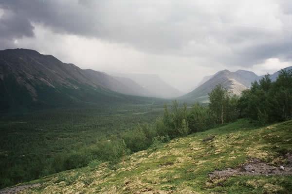 Дожди в Приморском крае