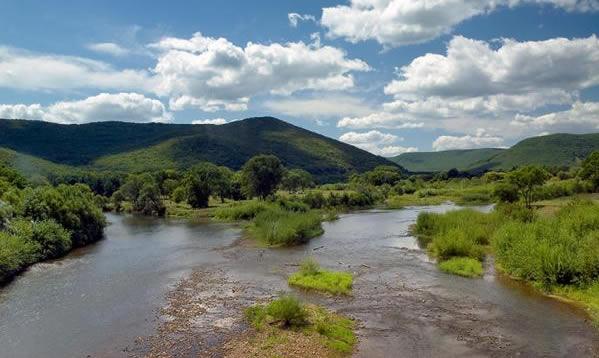 Река Арсеньевка, Приморский край