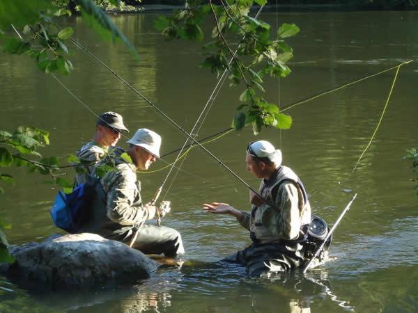 Ловля нахлыстом симы на реке