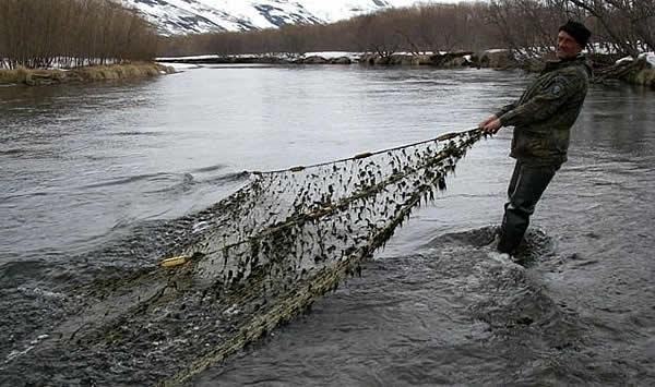 Запрещенные виды рыбалки