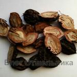Целебный орех Маньчжурский