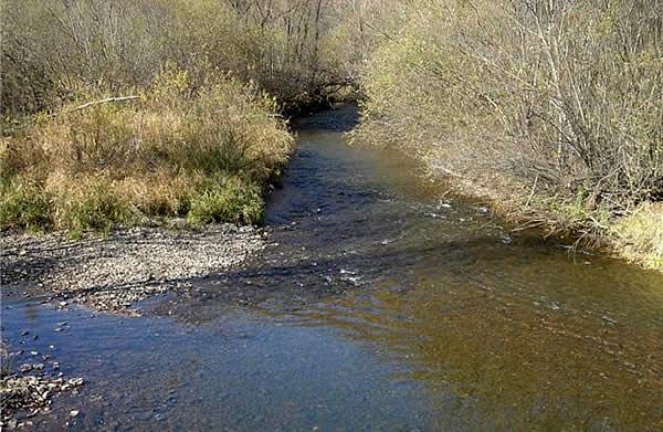 Река Муравейка