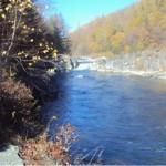 Любуемся красотами реки