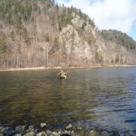 Рыбалка на Арму