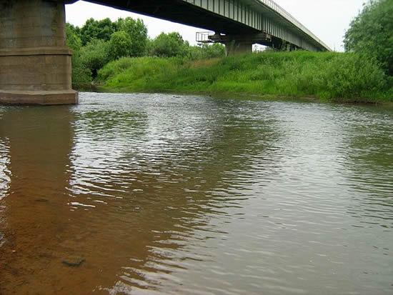 илистая река рыбалка