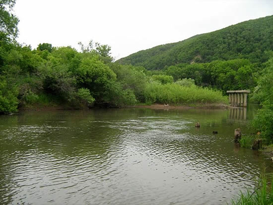 Река Лефу