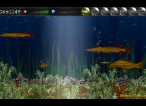 Рыбоед