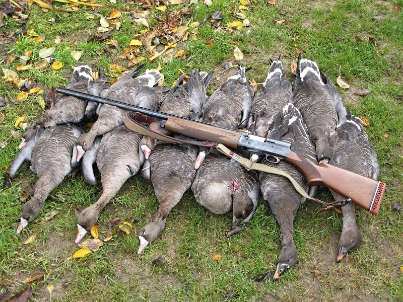 против весенней охоты